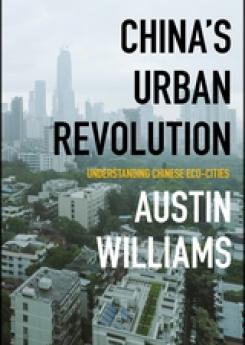 China's Urban Revolution  Publication Urban Design Group